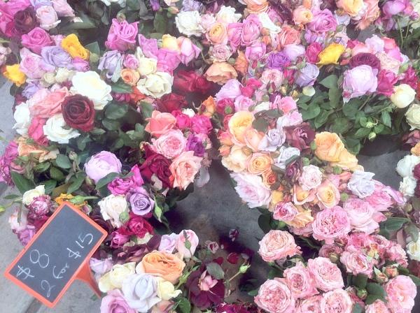 Eveleigh flowers